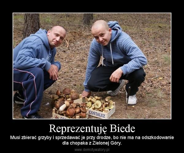 Reprezentuję Biede – Musi zbierać grzyby i sprzedawać je przy drodze, bo nie ma na odszkodowaniedla chopaka z Zielonej Góry.