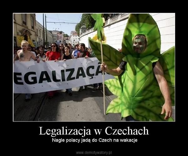 Legalizacja w Czechach –  Nagle polacy jadą do Czech na wakacje