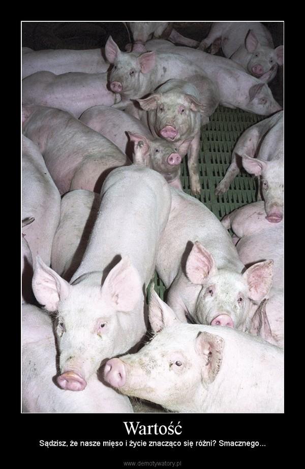 Wartość – Sądzisz, że nasze mięso i życie znacząco się różni? Smacznego...