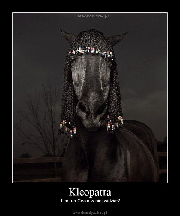 Kleopatra –  I co ten Cezar w niej widział?