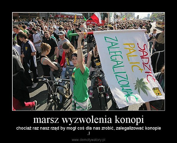 marsz wyzwolenia konopi – chociaż raz nasz rząd by mogł coś dla nas zrobić, zalegalizować konopie.!