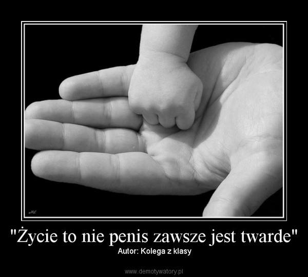 nie warte penisa 20 lat)