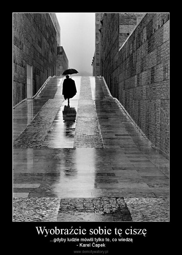 Wyobraźcie sobie tę ciszę – ...gdyby ludzie mówili tylko to, co wiedzą- Karel Čapek