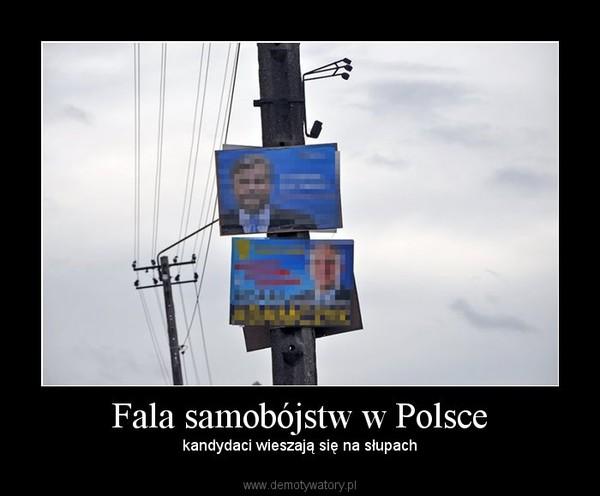 Fala samobójstw w Polsce – kandydaci wieszają się na słupach