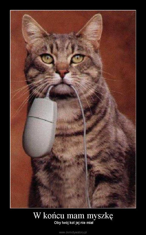 W końcu mam myszkę