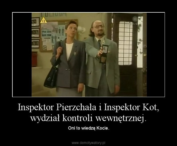 Inspektor Pierzchała i Inspektor Kot, wydział kontroli wewnętrznej. – Oni to wiedzą Kocie.