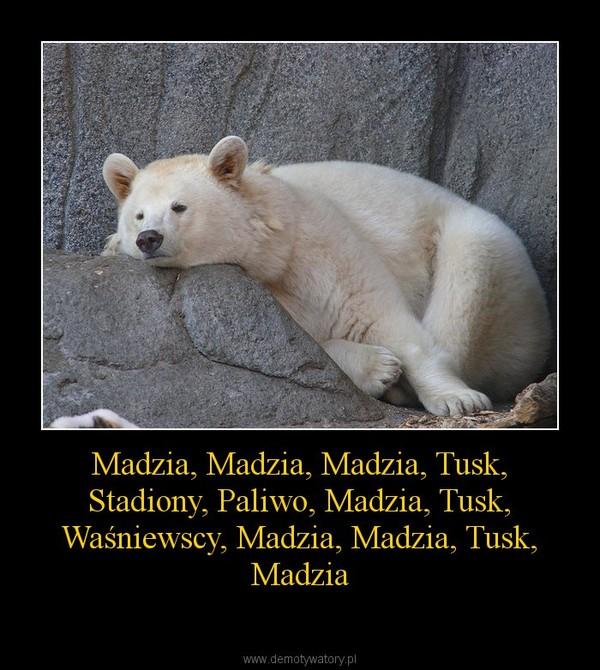 Madzia, Madzia, Madzia, Tusk, Stadiony, Paliwo, Madzia, Tusk, Waśniewscy, Madzia, Madzia, Tusk, Madzia –
