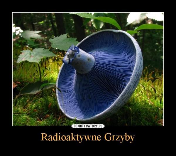 Radioaktywne Grzyby –