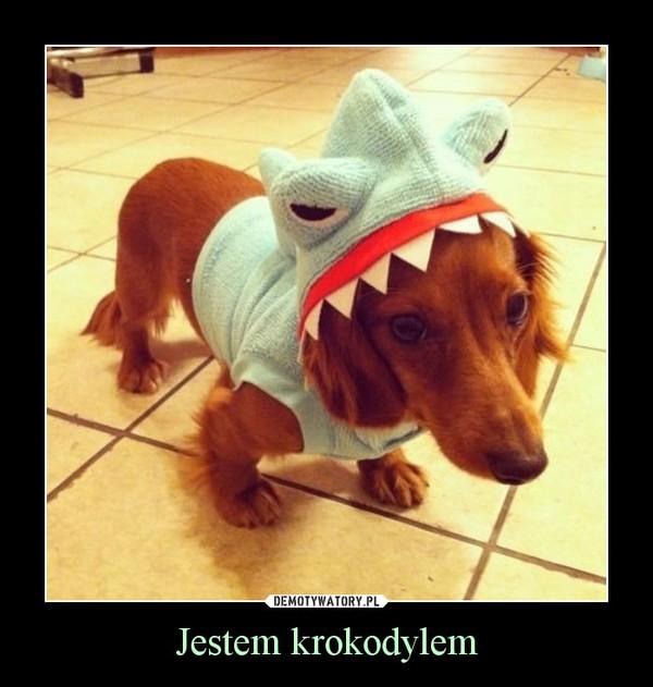 Jestem krokodylem –