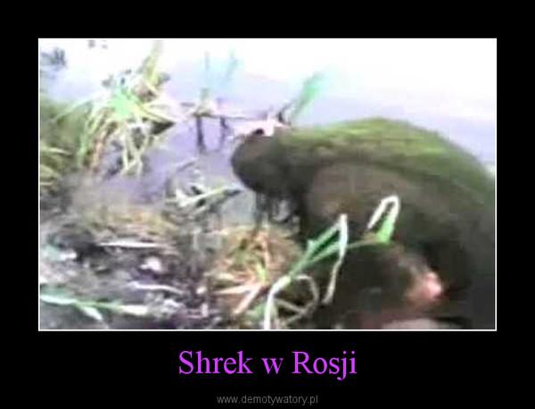 Shrek w Rosji –