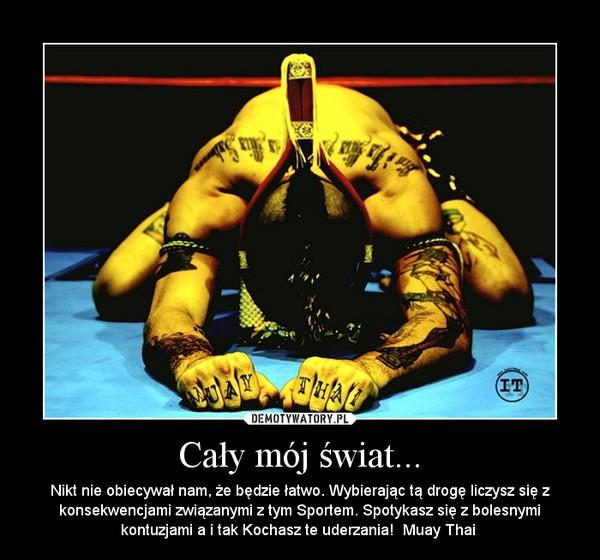 Cały mój świat... – Nikt nie obiecywał nam, że będzie łatwo. Wybierając tą drogę liczysz się z konsekwencjami związanymi z tym Sportem. Spotykasz się z bolesnymi kontuzjami a i tak Kochasz te uderzania!  Muay Thai