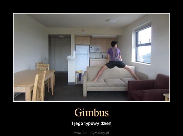 Gimbus – I jego typowy dzień