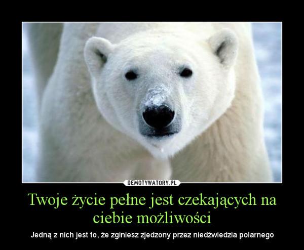 Twoje życie pełne jest czekających na ciebie możliwości – Jedną z nich jest to, że zginiesz zjedzony przez niedźwiedzia polarnego