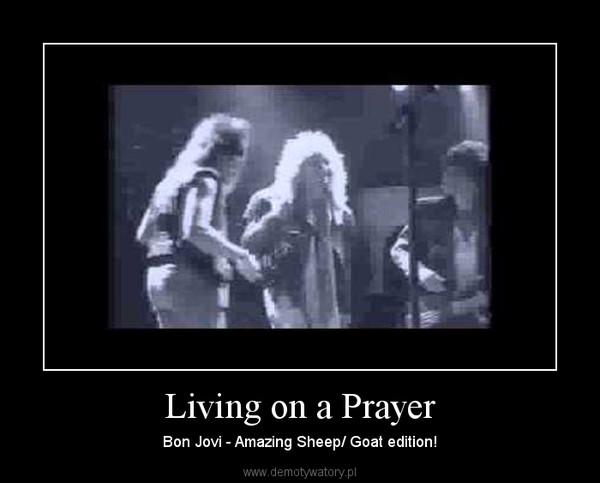 Living on a Prayer – Bon Jovi - Amazing Sheep/ Goat edition!