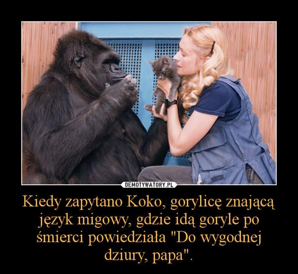 """Kiedy zapytano Koko, gorylicę znającą język migowy, gdzie idą goryle po śmierci powiedziała """"Do wygodnej dziury, papa"""". –"""