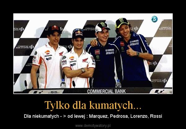Tylko dla kumatych... – Dla niekumatych - > od lewej : Marquez, Pedrosa, Lorenzo, Rossi