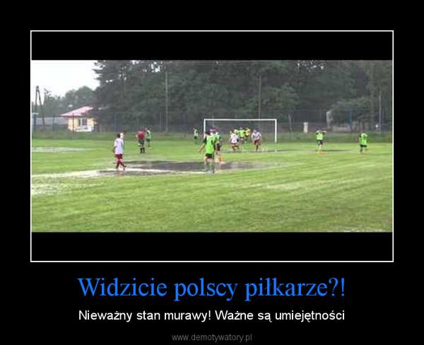 Widzicie polscy piłkarze?! – Nieważny stan murawy! Ważne są umiejętności