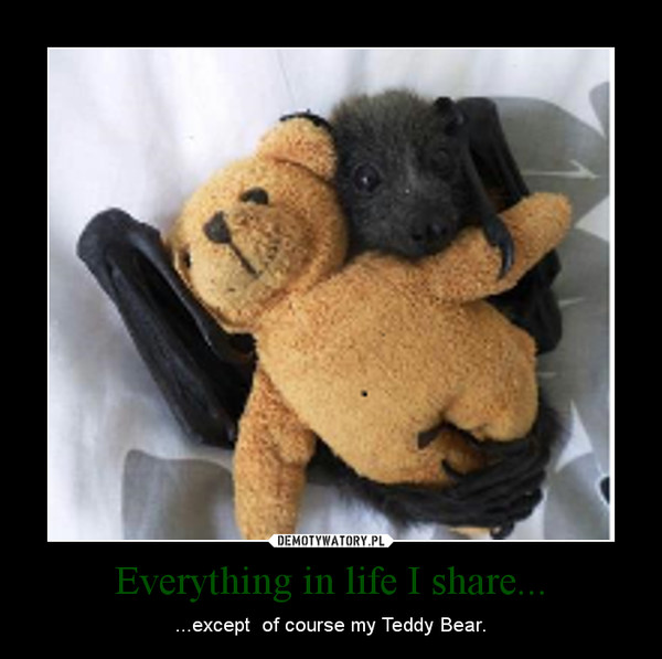 Everything in life I share... – ...except  of course my Teddy Bear.