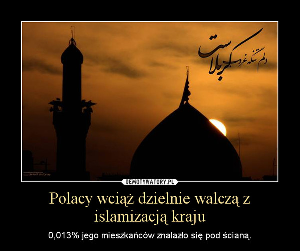 Polacy wciąż dzielnie walczą z islamizacją kraju – 0,013% jego mieszkańców znalazło się pod ścianą.