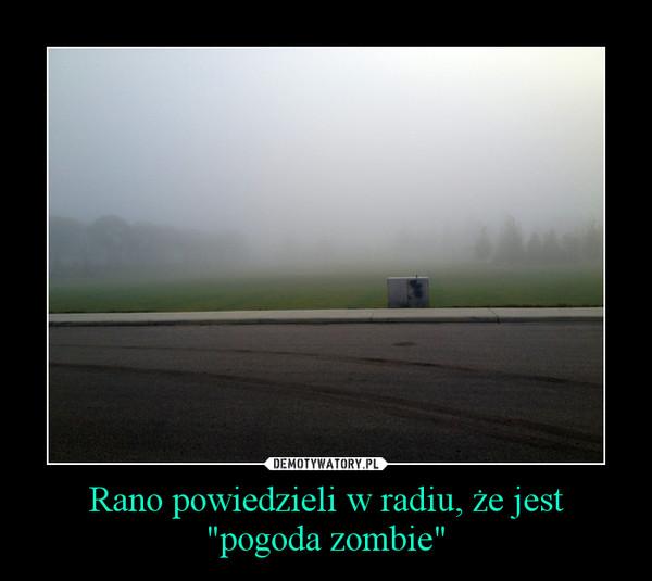 """Rano powiedzieli w radiu, że jest """"pogoda zombie"""" –"""