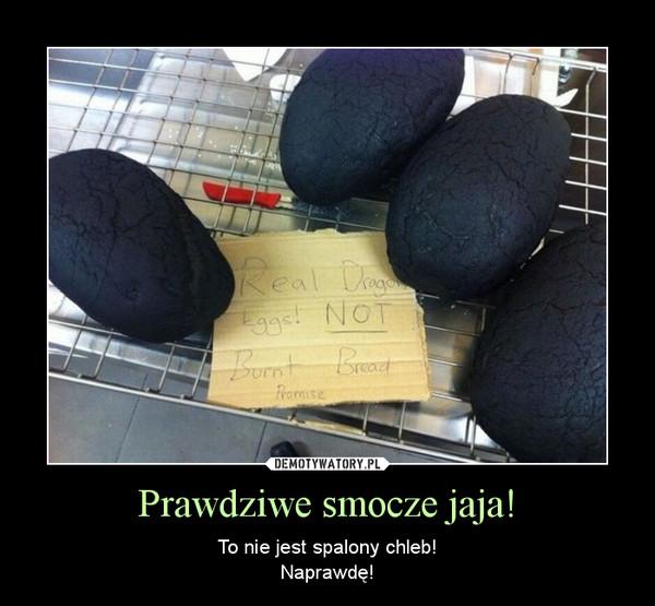 Prawdziwe smocze jaja! – To nie jest spalony chleb!Naprawdę!