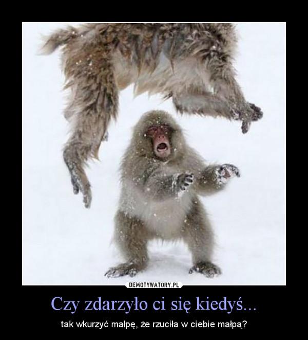 Czy zdarzyło ci się kiedyś... – tak wkurzyć małpę, że rzuciła w ciebie małpą?