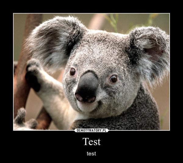 Test – test