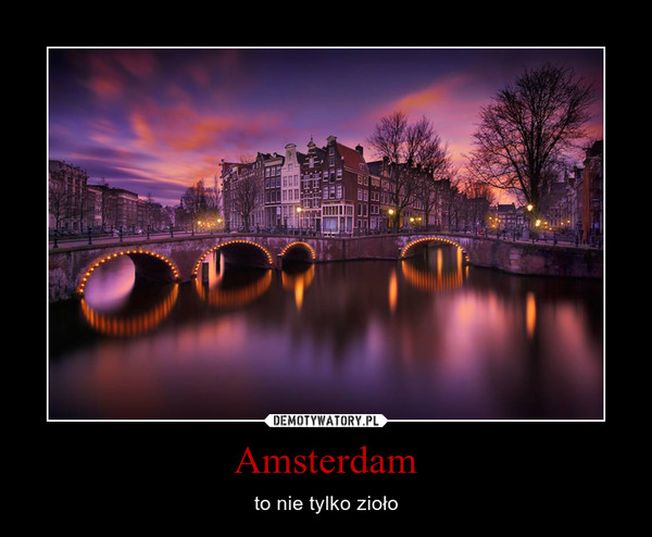 Amsterdam – to nie tylko zioło