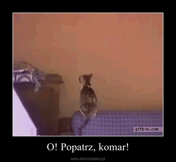 O! Popatrz, komar! –