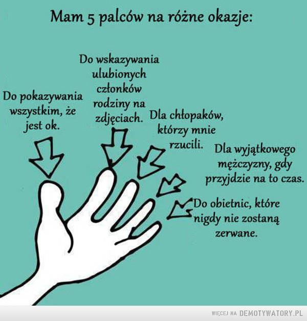 5 palców –