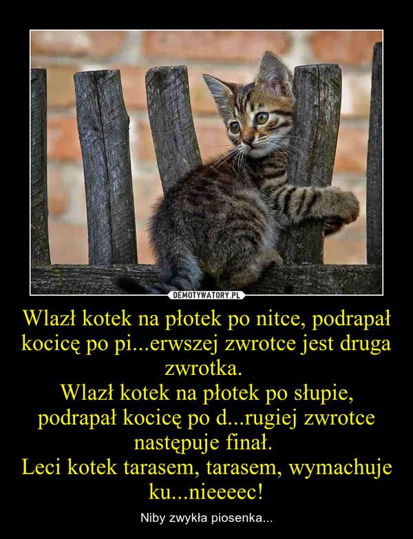Wlazł kotek na płotek po nitce, podrapał kocicę po pi...erwszej zwrotce jest druga zwrotka. Wlazł kotek na płotek po słupie, podrapał kocicę po d...rugiej zwrotce następuje finał. Leci kotek tarasem, tarasem, wymachuje ku...nieeeec! – Niby zwykła piosenka...