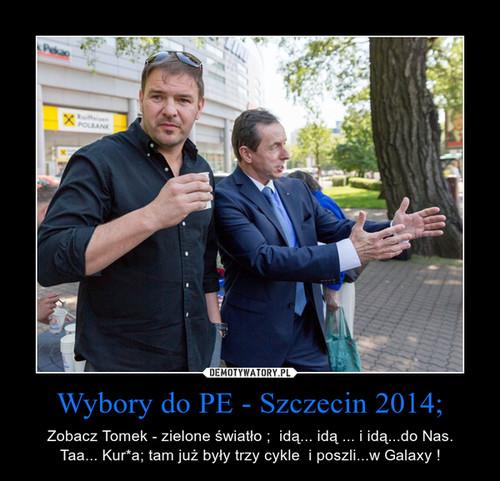 Wybory do PE - Szczecin 2014;