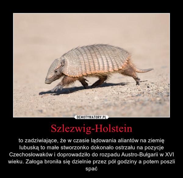 Szlezwig-Holstein – to zadziwiające, że w czasie lądowania aliantów na ziemię lubuską to małe stworzonko dokonało ostrzału na pozycje Czechosłowaków i doprowadziło do rozpadu Austro-Bułgarii w XVI wieku. Załoga broniła się dzielnie przez pół godziny a potem poszli spać