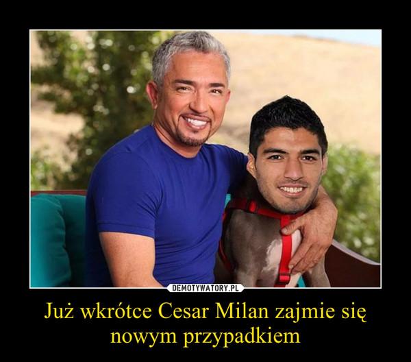Już wkrótce Cesar Milan zajmie się nowym przypadkiem –