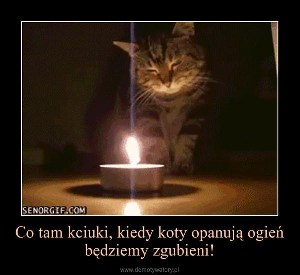 Co tam kciuki, kiedy koty opanują ogień będziemy zgubieni! –