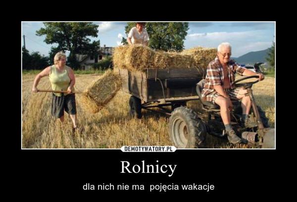 Rolnicy – dla nich nie ma  pojęcia wakacje