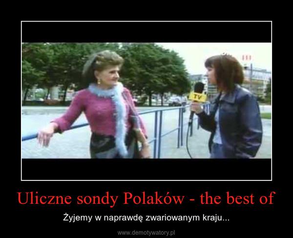 Uliczne sondy Polaków - the best of – Żyjemy w naprawdę zwariowanym kraju...