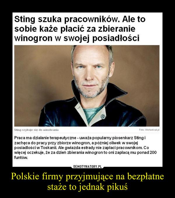 Polskie firmy przyjmujące na bezpłatne staże to jednak pikuś –