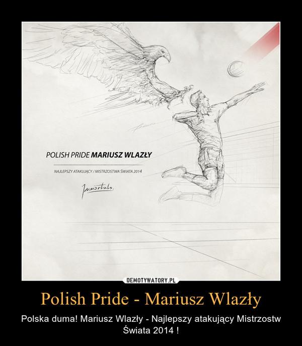 Polish Pride - Mariusz Wlazły – Polska duma! Mariusz Wlazły - Najlepszy atakujący Mistrzostw Świata 2014 !
