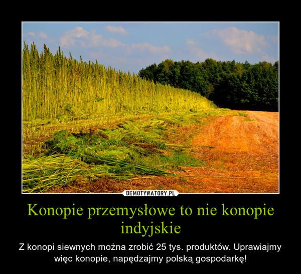 Konopie przemysłowe to nie konopie indyjskie – Z konopi siewnych można zrobić 25 tys. produktów. Uprawiajmy więc konopie, napędzajmy polską gospodarkę!