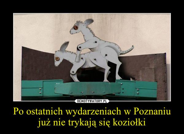 Po ostatnich wydarzeniach w Poznaniu już nie trykają się koziołki –