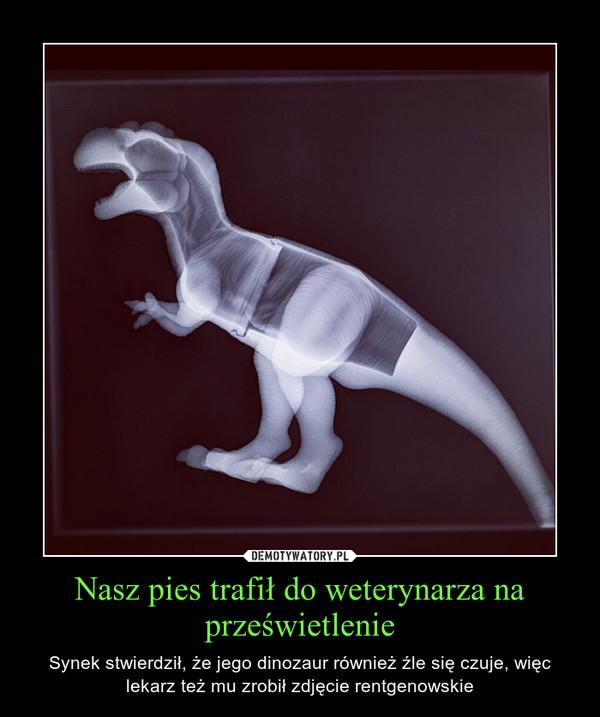Nasz pies trafił do weterynarza na prześwietlenie – Synek stwierdził, że jego dinozaur również źle się czuje, więc lekarz też mu zrobił zdjęcie rentgenowskie