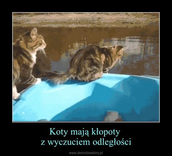 Koty mają kłopoty z wyczuciem odległości –