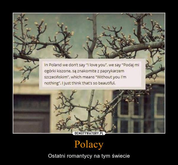 Polacy – Ostatni romantycy na tym świecie