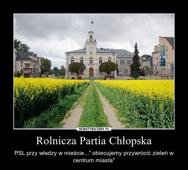 """Rolnicza Partia Chłopska – PSL przy władzy w mieście..."""" obiecujemy przywrócić zieleń w centrum miasta"""""""