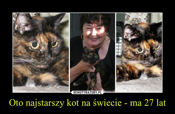 Oto najstarszy kot na świecie - ma 27 lat –