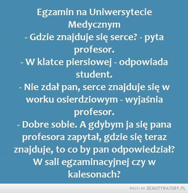 Egzamin... –