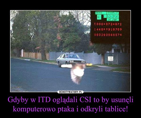 Gdyby w ITD oglądali CSI to by usunęli komputerowo ptaka i odkryli tablice! –