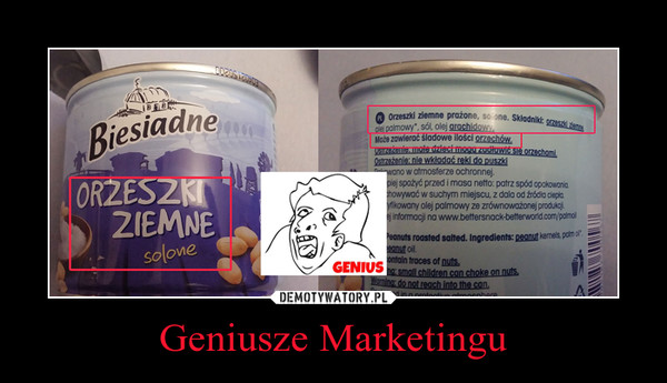 Geniusze Marketingu –