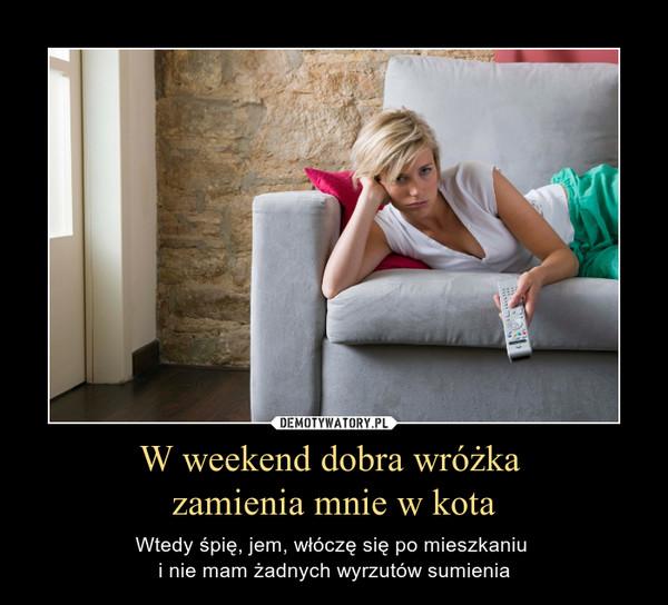 W weekend dobra wróżka zamienia mnie w kota – Wtedy śpię, jem, włóczę się po mieszkaniu i nie mam żadnych wyrzutów sumienia